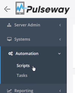 Script menu item in Pulseway