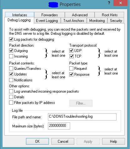 DNSDebugLogSetting