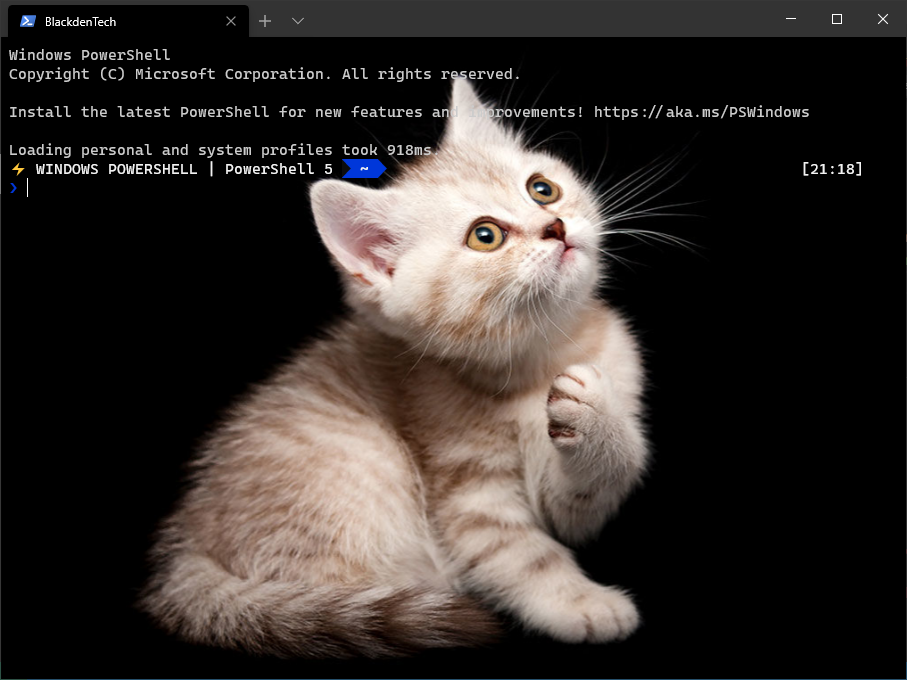 Images in New Windows terminal background
