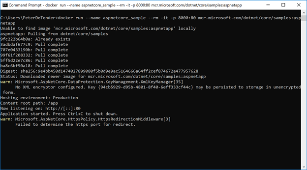 Downloading a container instance from Microsoft