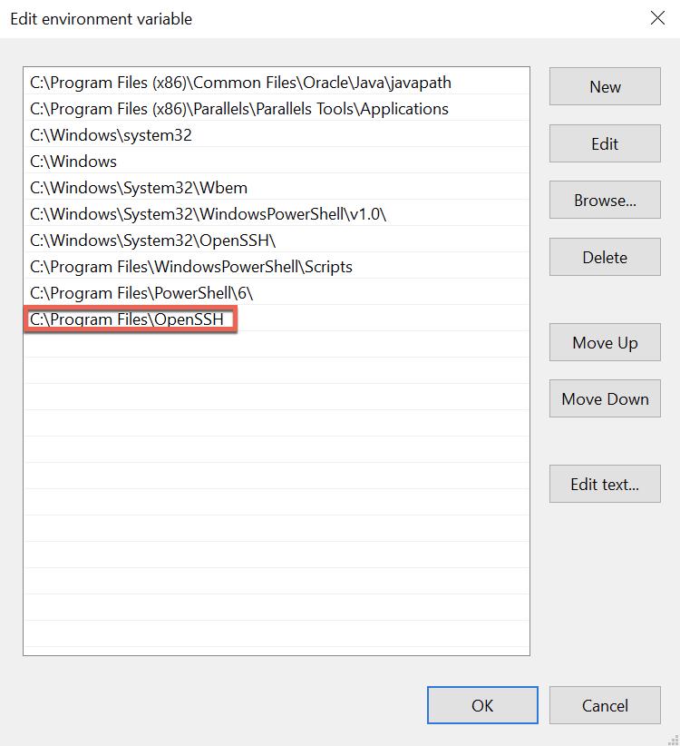 Editing Environment Variable