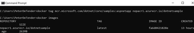 Verifying Docker tag