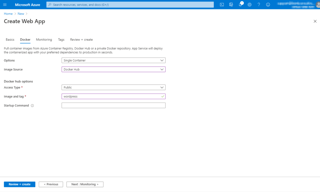Entering the necessary Docker container details for the Azure Web App