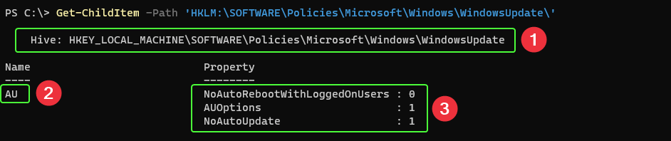 Getting registry values for Windows Update