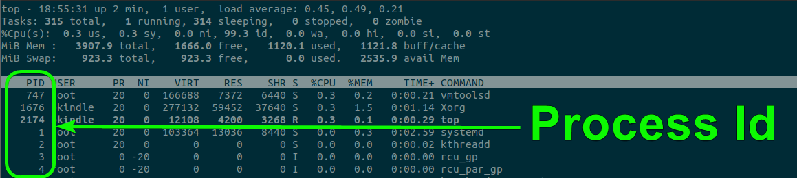 The top command on Ubuntu Desktop 20.04 LTS showing all running PID's.