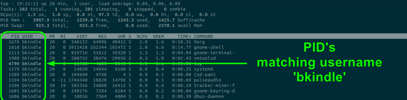 The top command displaying only processes for the user bkindle.