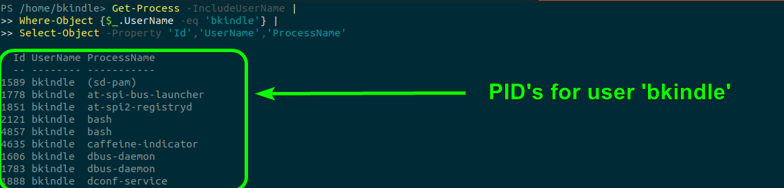 Retrieving Linux PID's with PowerShell's Get-Process cmdlet.