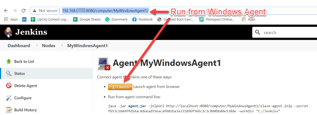 Utilize the instructions and links to install the agent.