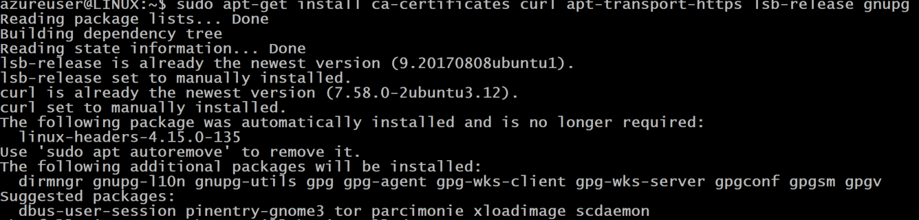 output showing the packages deployed