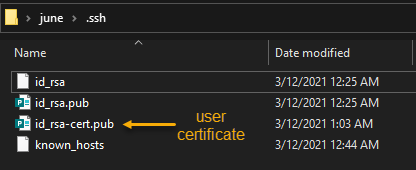 Finding the SSH user certificate