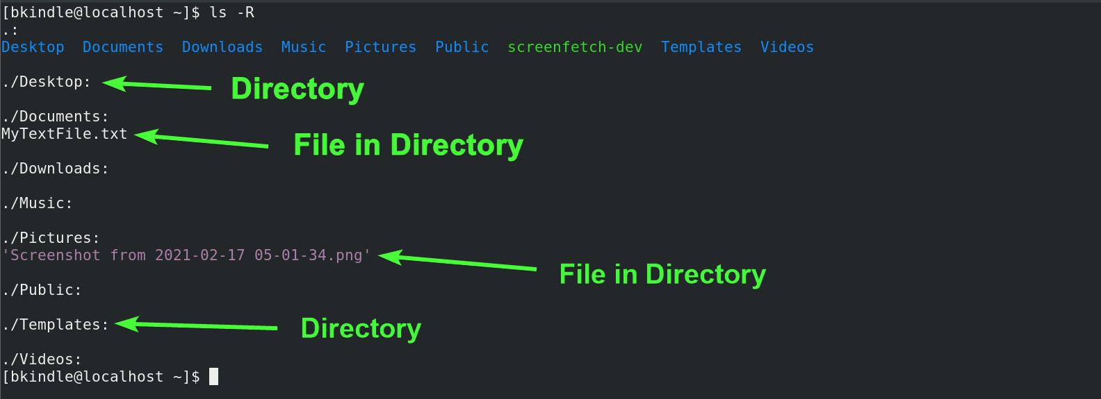 Recursively displaying contents of a directory.