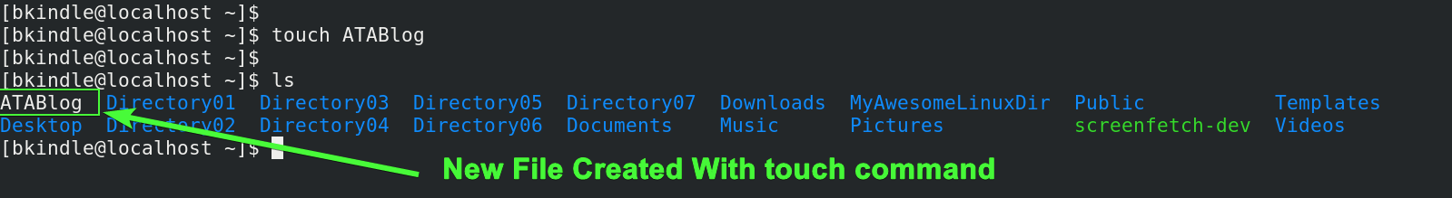 Creating a file with the touch command.