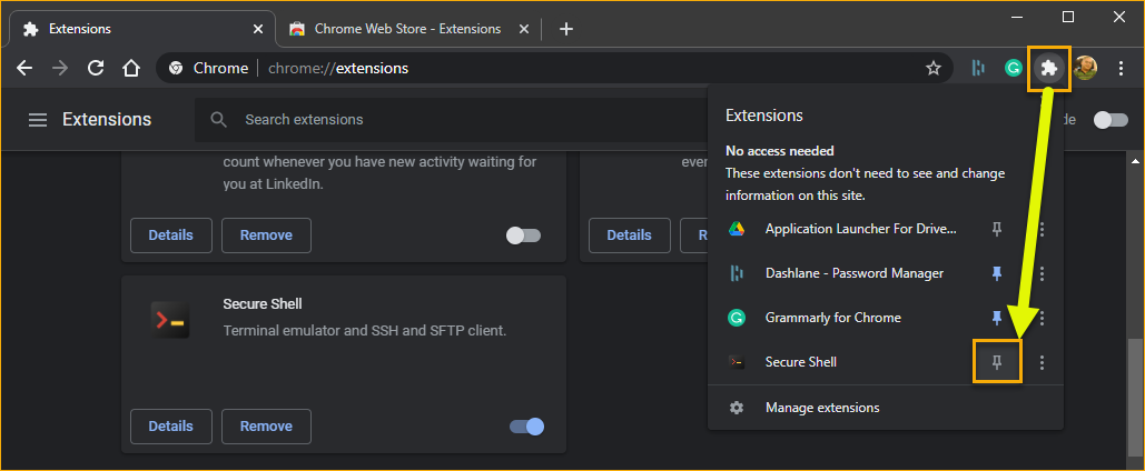 Pinning the Secure Shell extension