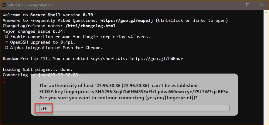 Confirming the remote host fingerprint.
