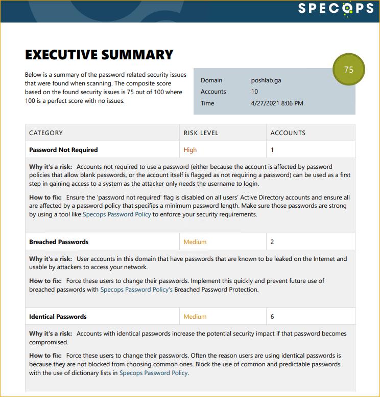 SpecOps Password Auditor Executive Summary PDF Report