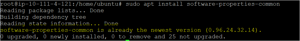 Installing the package using apt command