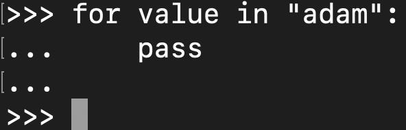 Using the pass statement