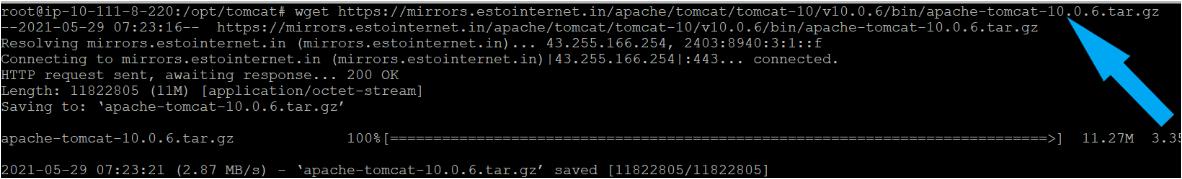 Downloading the Apache Tomcat 10