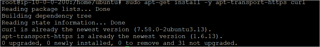 Installing the transport-https and curl package on each ubuntu system