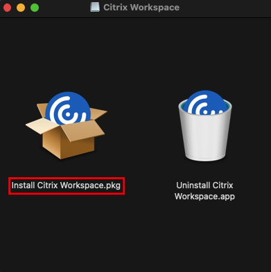 Displaying the Citrix Workspace installation file