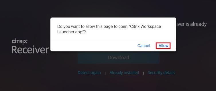 Invoke Citrix Workspace Launcher prompt