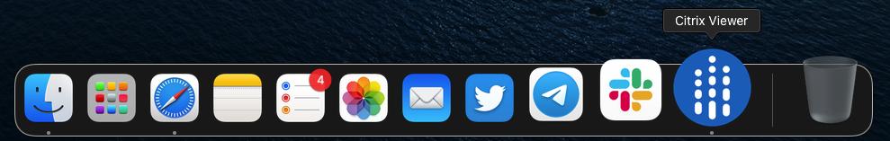 Displaying Citrix Viewer application
