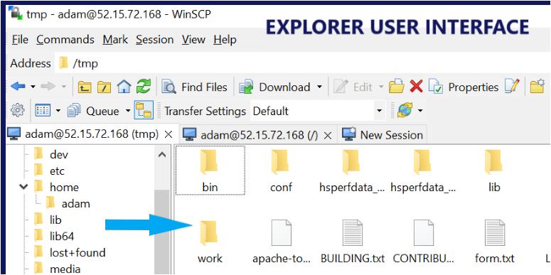 WinSCP Explorer Interface
