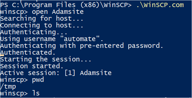 Running Commands Interactively using winscp.com