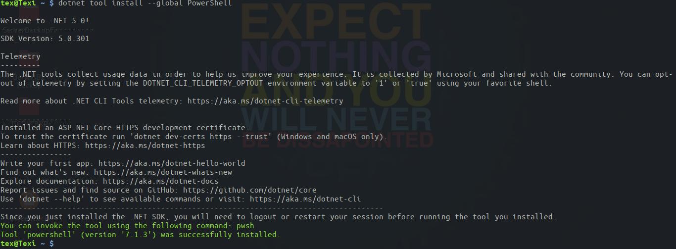Installing PowerShell via the .Net SDK