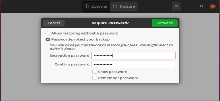 Encrypting the backup