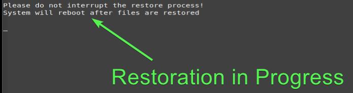 Restoring files