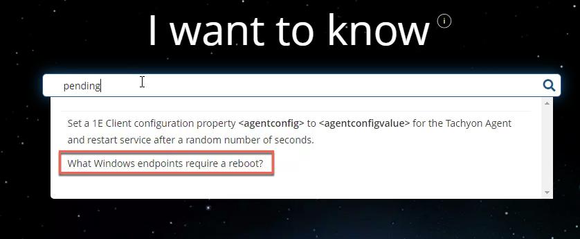 Selecting my custom instruction in Explorer