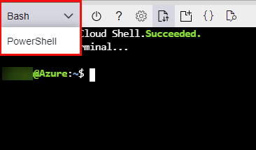 Switching to a Bash Shell
