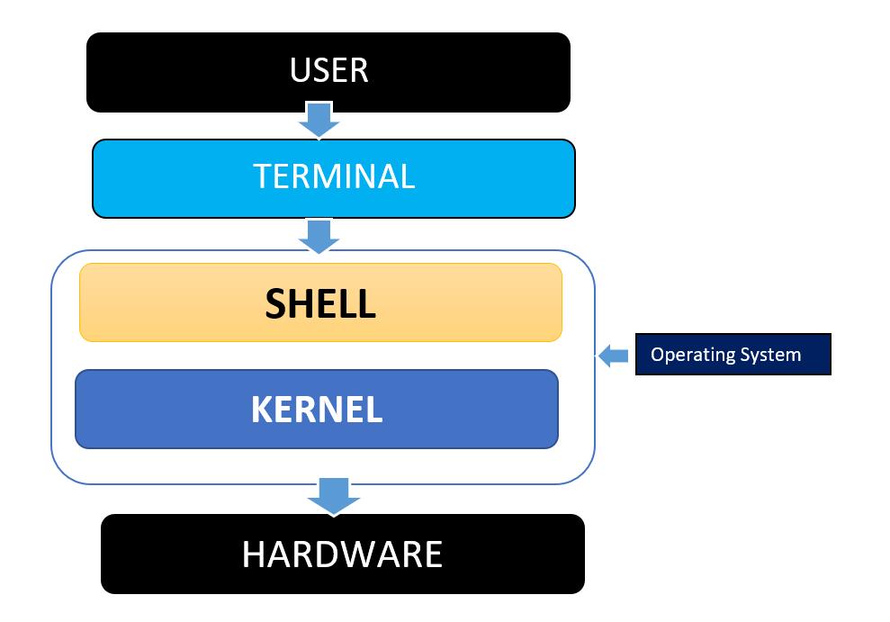 Shell Script Workflow
