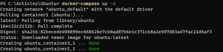 Starting a Docker Compose service.