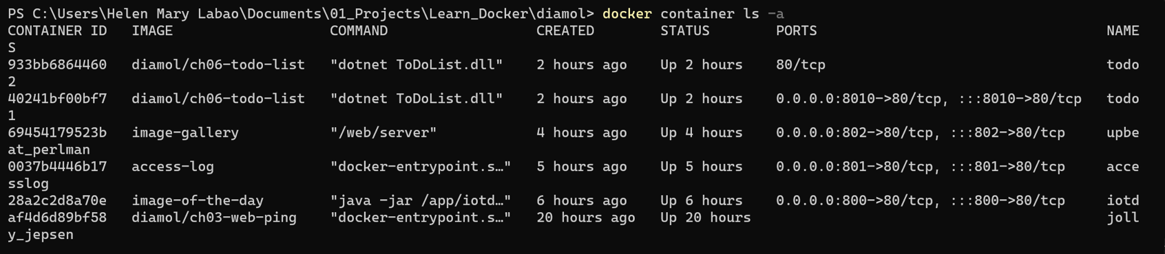 Listing Docker Containers After Removing Stray Containers