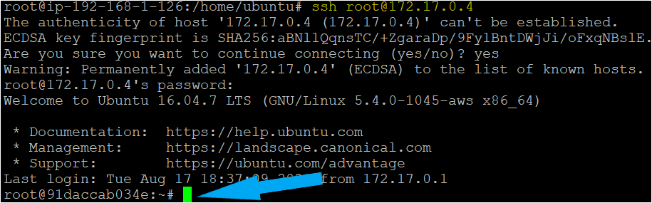 try to SSH the container