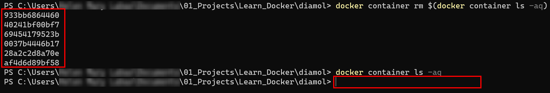Removing Both Stopped and Running Containers