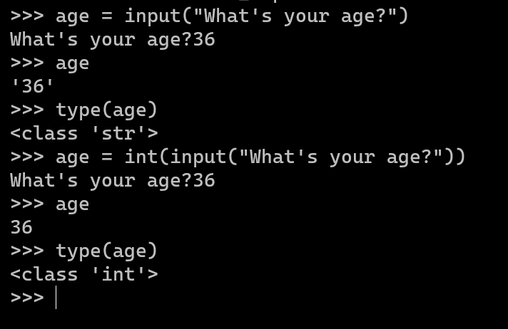 Executing and Typecasting an input() Command