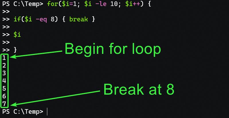 Breaking a for loop