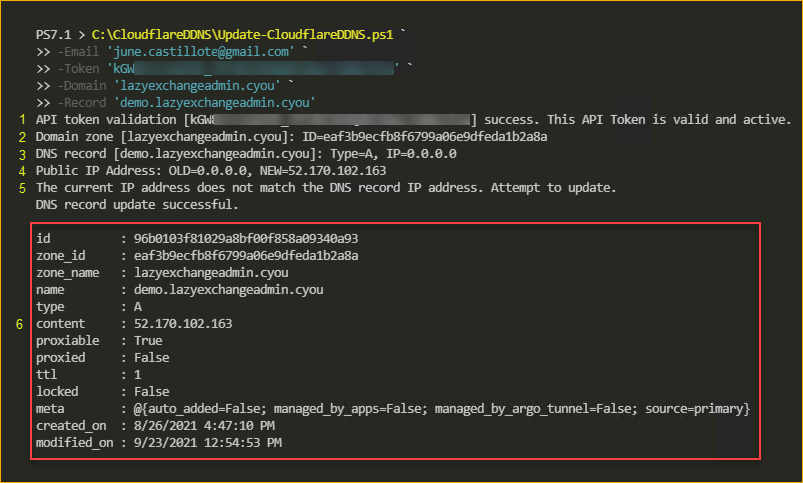 Running the Cloudflare dynamic DNS update script
