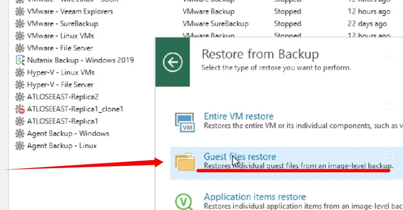 Selecting the Guest files restore Option