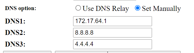 Manually setting a router DNS settings.